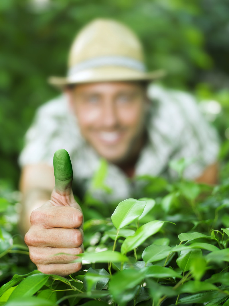 bordas-jardineria