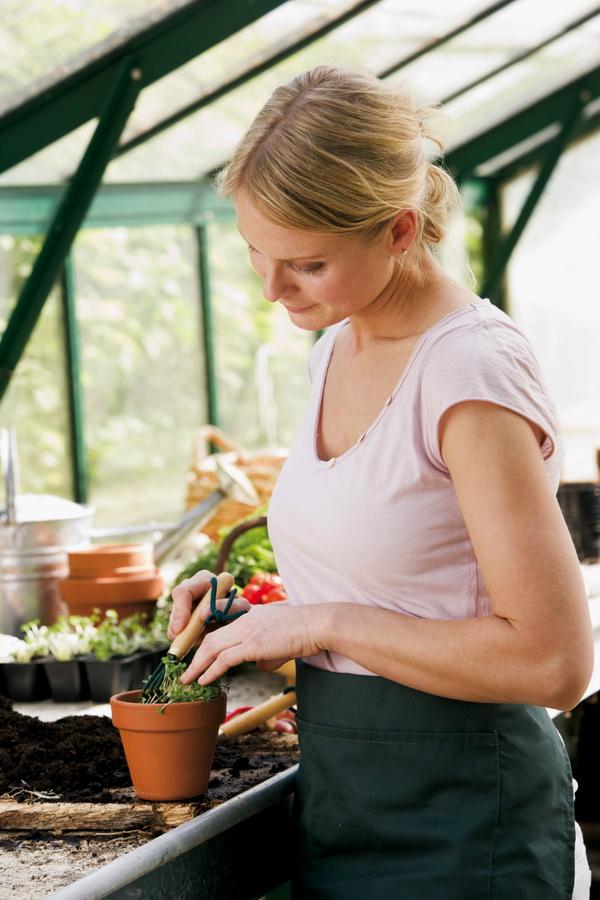 No he podido resistirme a la tentación es mi hija y es que le encantan las plantas !! es igual que yo.