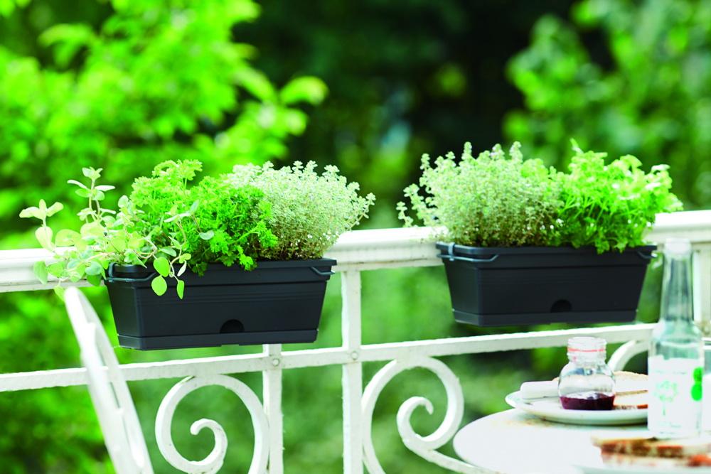 jardineras-elho-Garden Bordas