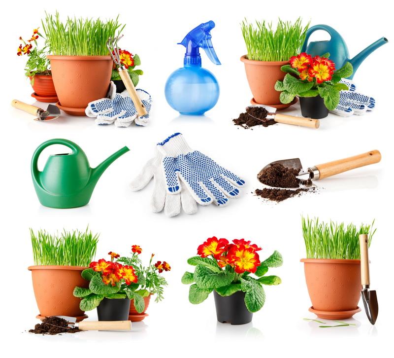 tasques de jardineria-bordasjpg