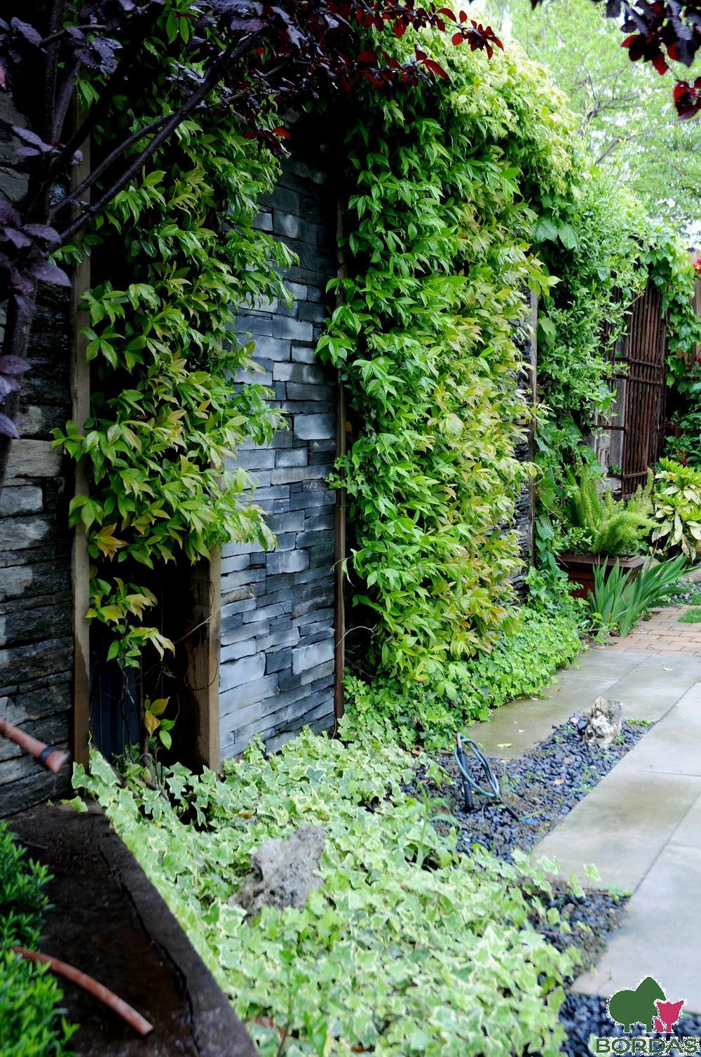 trepadopras- garden-bordas